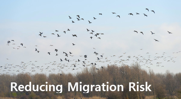 reducing migration risk